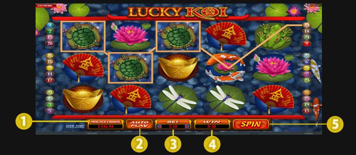 การเล่น goldenslot lucky koi